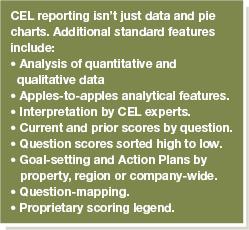 React T - Data & Analytics Reporting